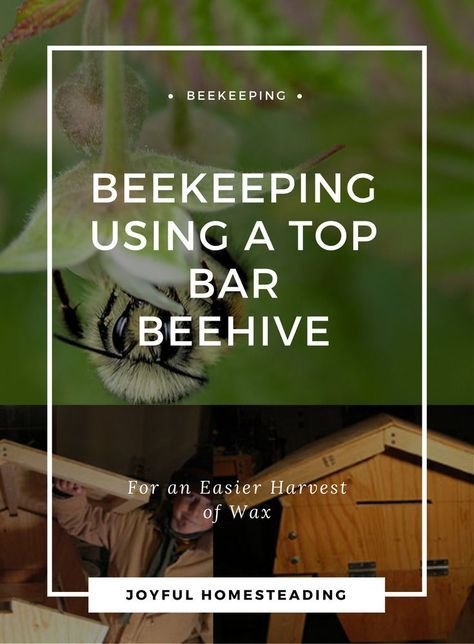 Top Bar Beekeeping For An Abundant Wax Harvest