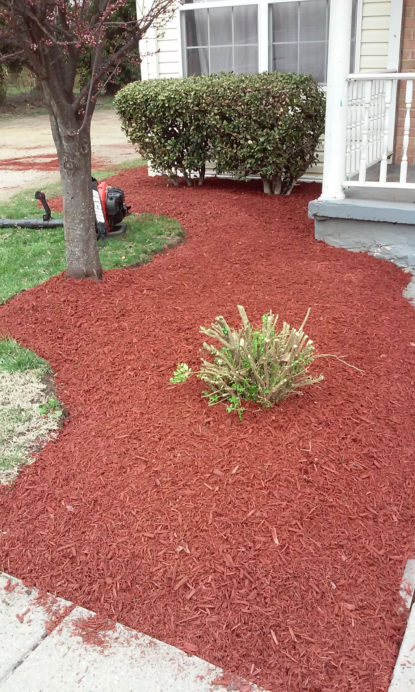 We Offer Tree Service S O D Mulch Topsoil Stone Work Lawn Service Plants And More Give Us A Call At 443 900 4303 Lawn Care Lawn Service Tree Service