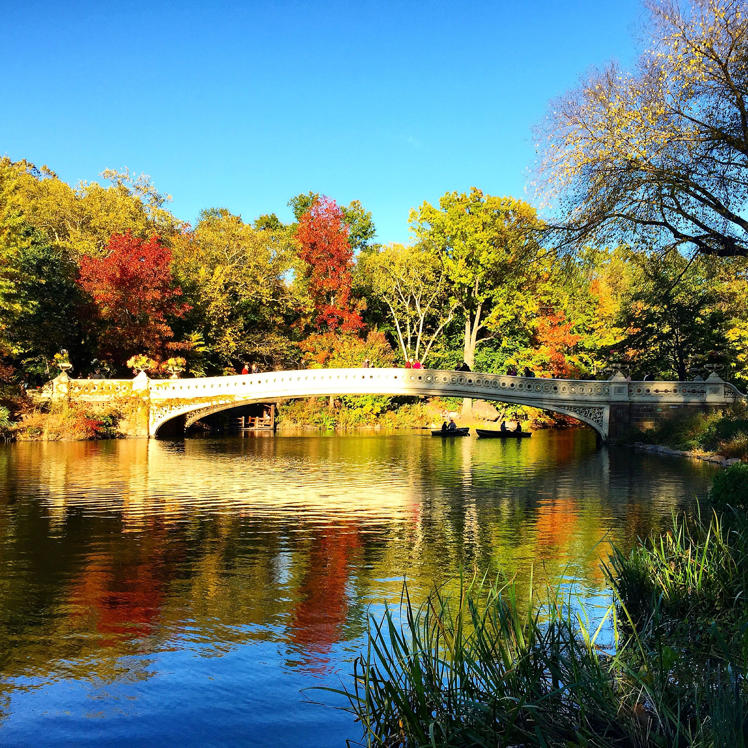 40 Central Park South Nyc: Best Fall Photo Spots In Central Park