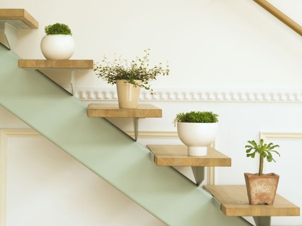 25 ways of including indoor plants into your homes décor