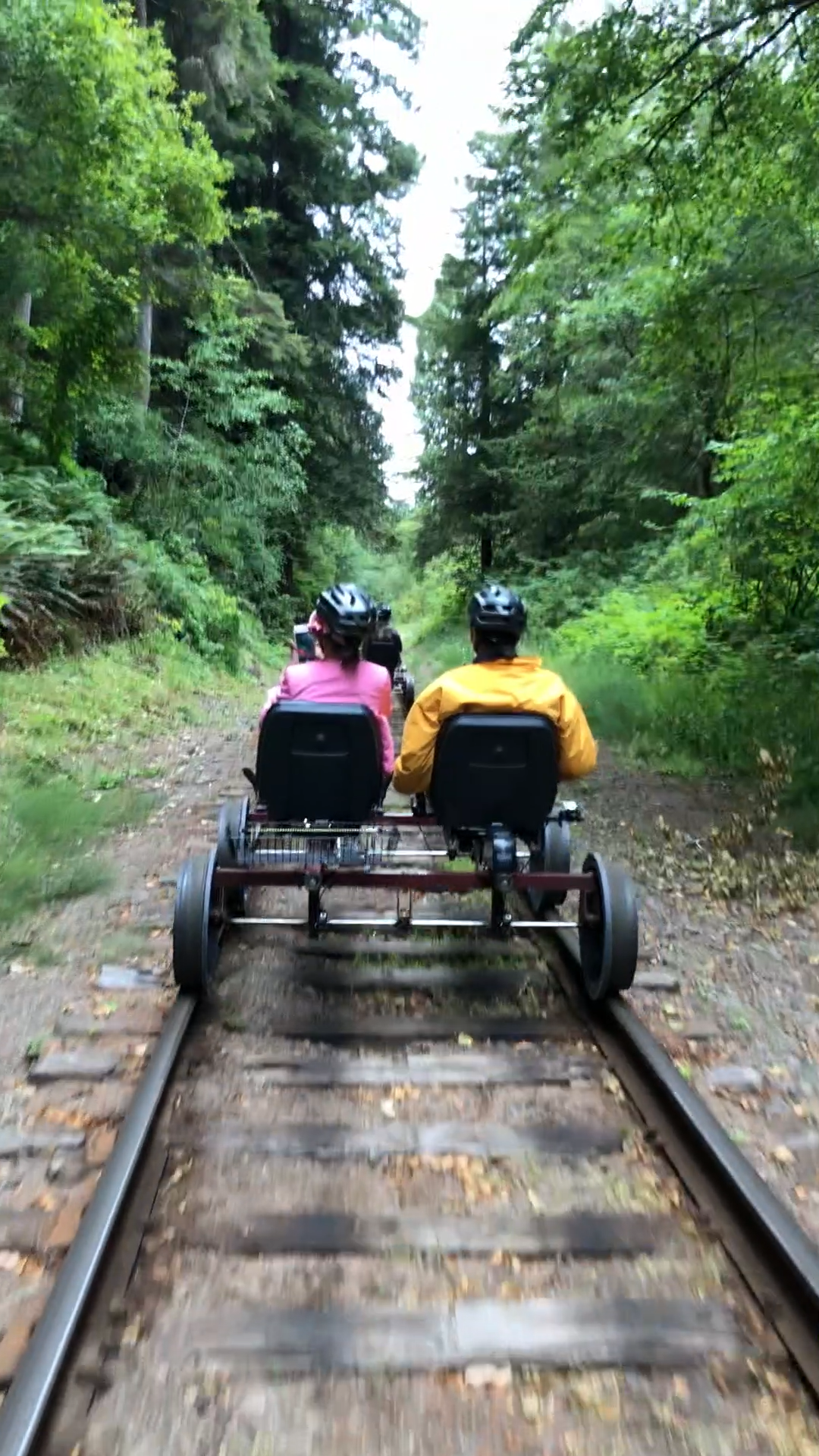 A fun way to explore - rail biking is in select states around the country. It's easy too - electric powered! Hop on a rail bike and get on the actual train rail and explore the redwoods! More on the blog post! This particular spot is in the Redwoods in Mendocino County but there are some on the East Coast as well! #travel
