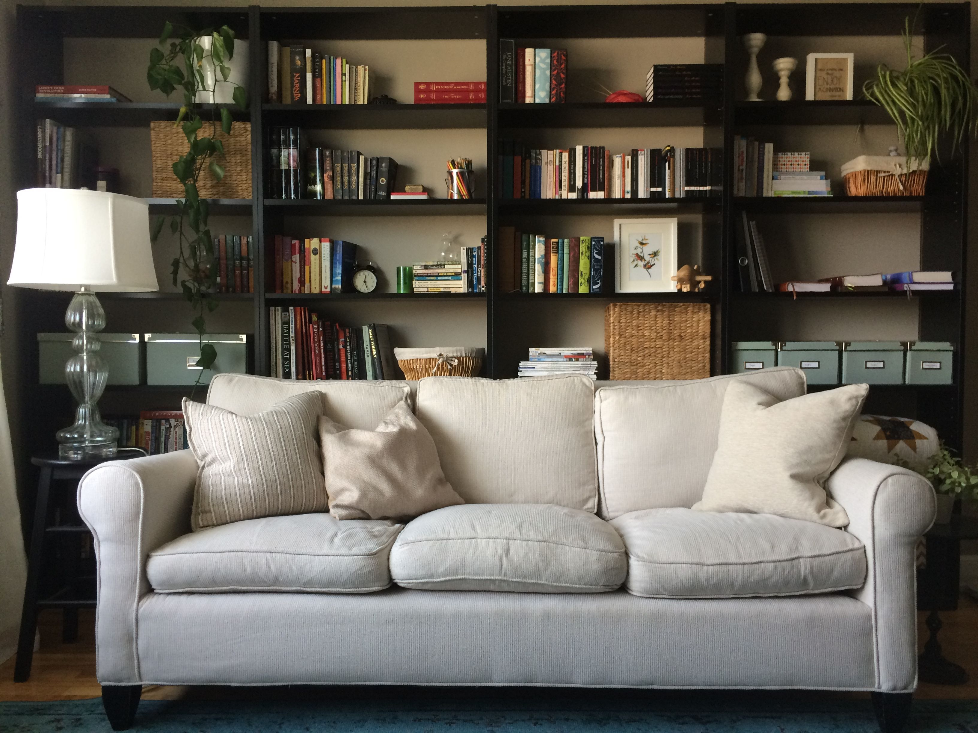 Line Your Living Room With Bookshelves Bookshelves In Living Room Couch Furniture Bookcase Behind Sofa