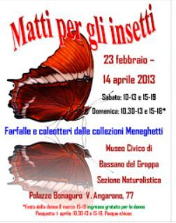 Matti per gli insetti – Bugs and insects exhibit: ongoing through  April 14, in Bassano del Grappa, Palazzo Bonaguro, Via Angarano 77, about 22 miles northeast of Vicenza;  Saturday 10 a.m.-1 p.m. and 3-7 p.m.; Sunday 10:30 a.m.-1 p.m. and 3-6 p.m.; closed on March 31 (Easter); entrance fee: €3; reduced €2 (10-26 years old and older than 65); special opening and free entrance for women  on March 8 (Women's Day).