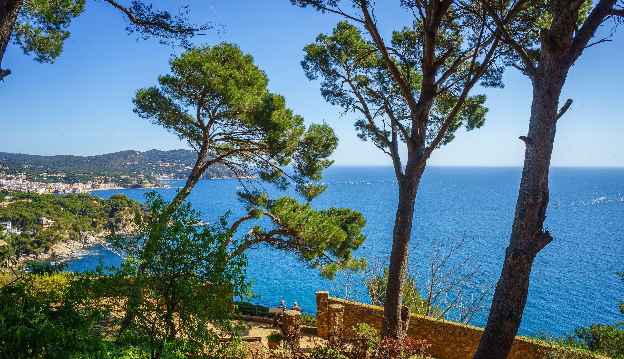 Fonds D Ecran Espagne Cote Mer Costa Brava Arbres Nature Image
