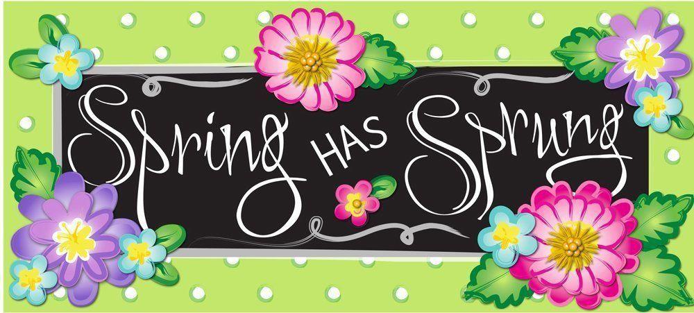 Spring Door Mat Evergreen Insert Entrance Kitchen Floor Outdoor Rug Rubber NEW  #EvergreenFlagGarden
