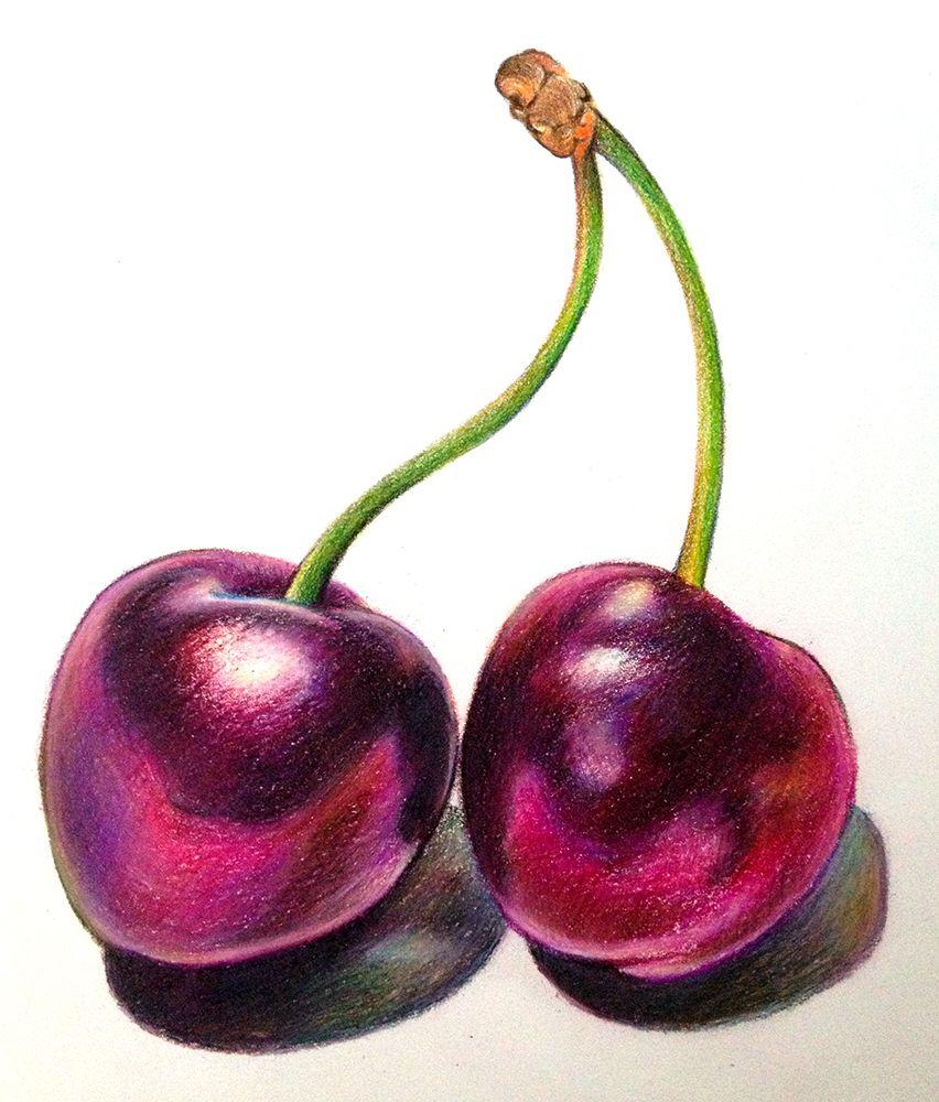 Adjusted black cherries still life drawing fruits