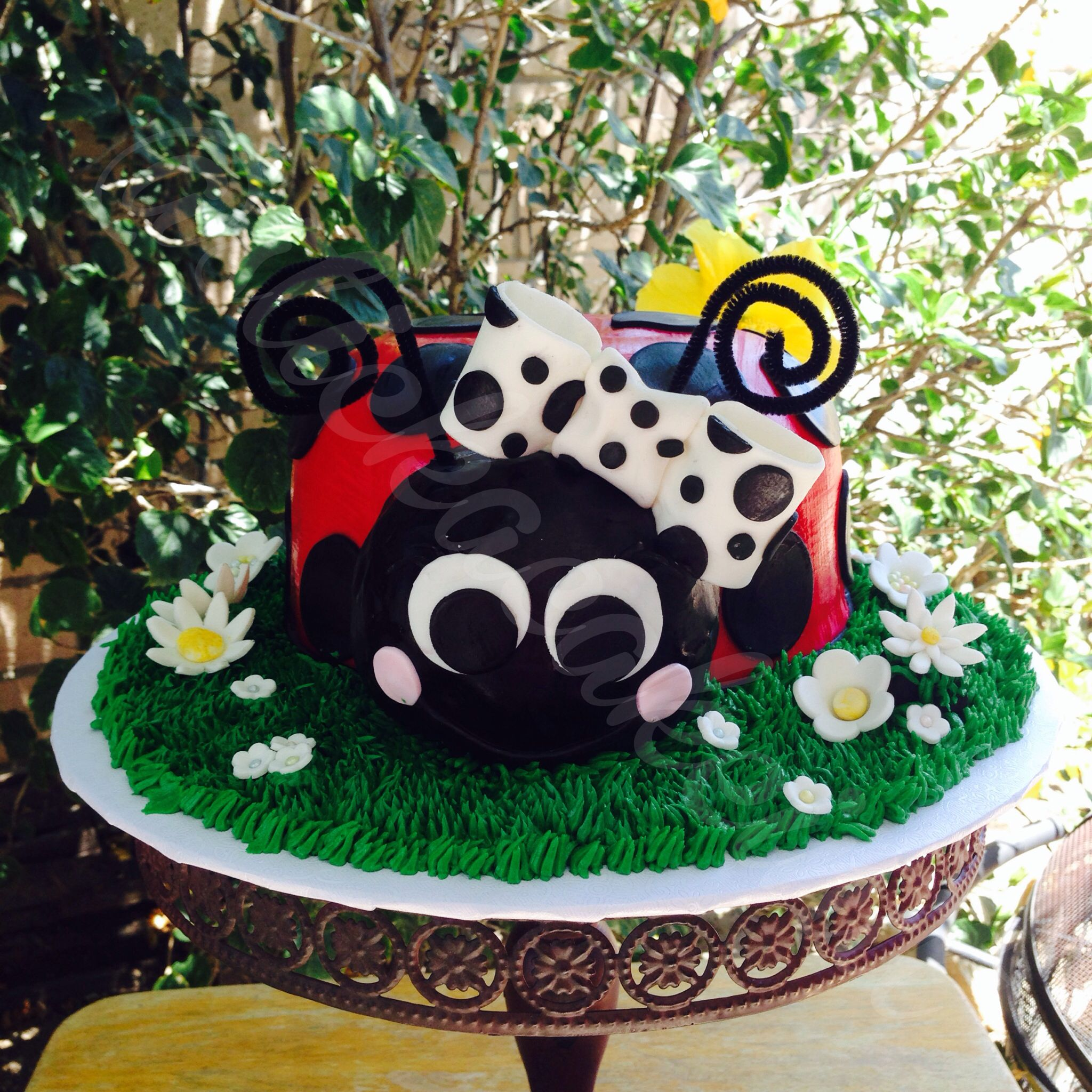Lady Bug Birthday Cake By Stick A Cake In It Stick A Cake In It