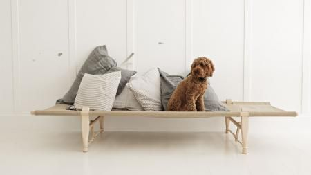 Cushions-dog-day-bed