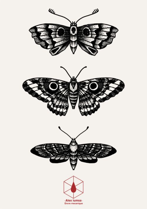 Dotwork Butterfly Tumblr Insect Tattoo Butterfly Tattoo Moth Tattoo