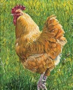 b8c147eb7ff5f9 Famous Chicken Paintings - Bing Images   Art - Animals - BIRDS ...