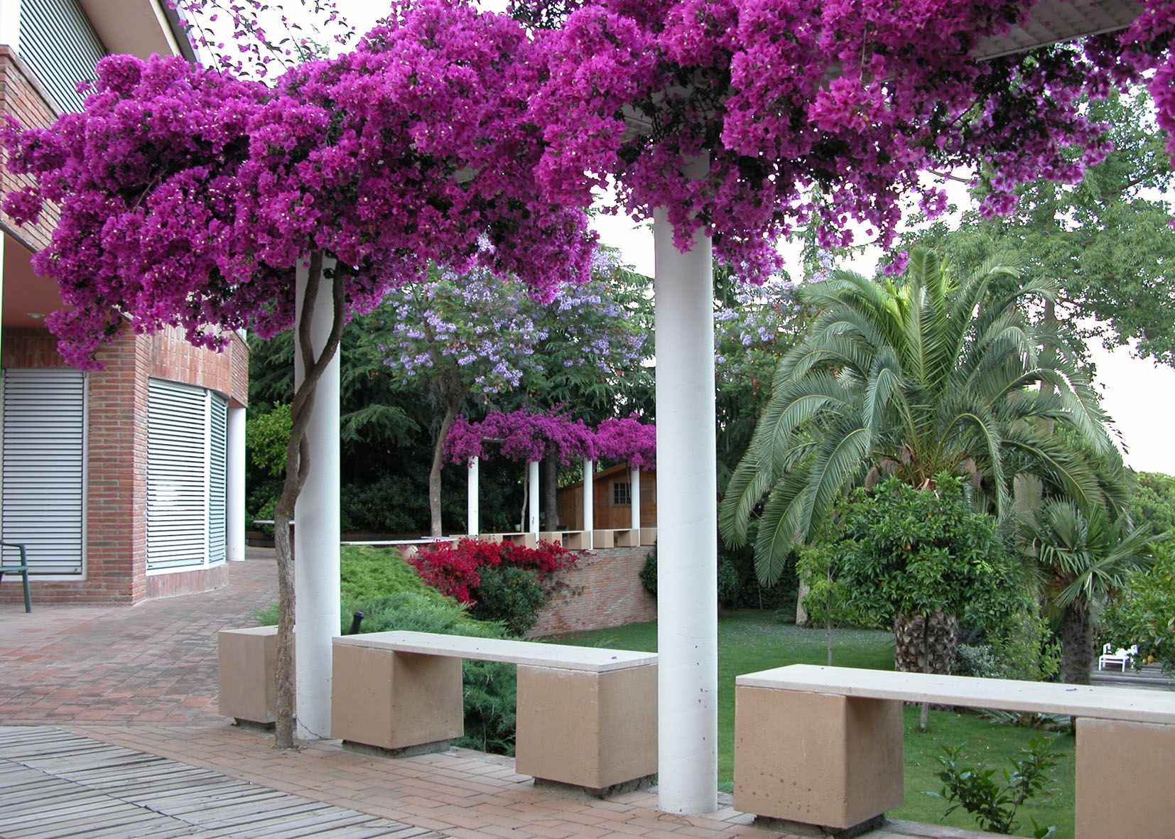 Ideas de casas de jardin estilo mediterraneo dise ado for Jardines con estilo