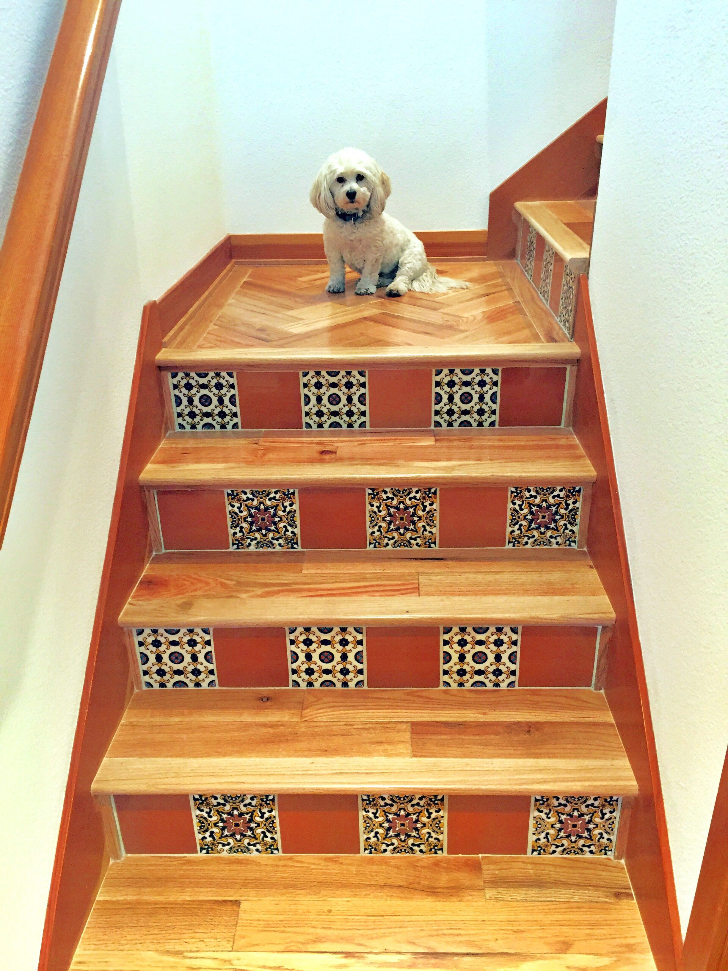 Interior Stair Risers Covered With 6x6 California Art Tile