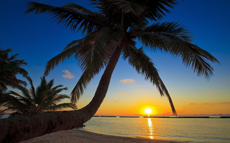Sunset Beach Wallpaper 2880 1800 High Definition Wallpaper