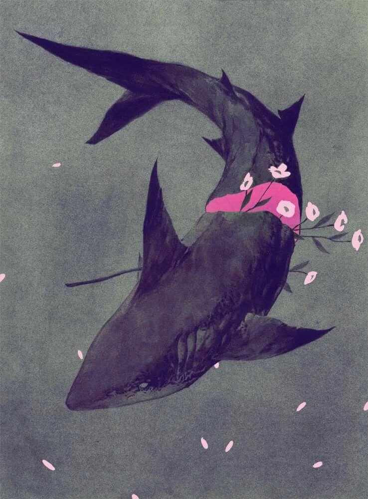 Pin de Bia Bizzotto en Background | Pinterest | Tiburones, Imagenes ...