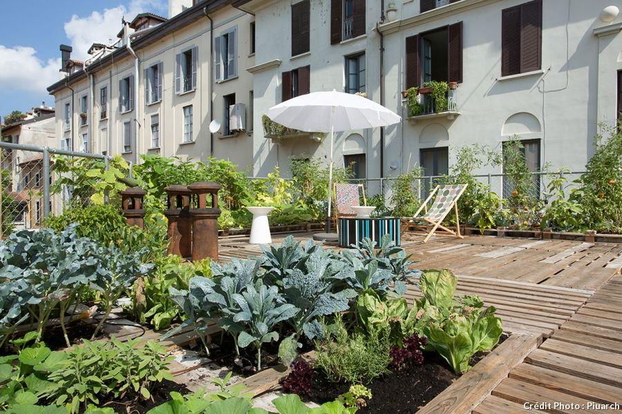 Une terrasse aménagée sur un toit en Italie avec un coin potager et