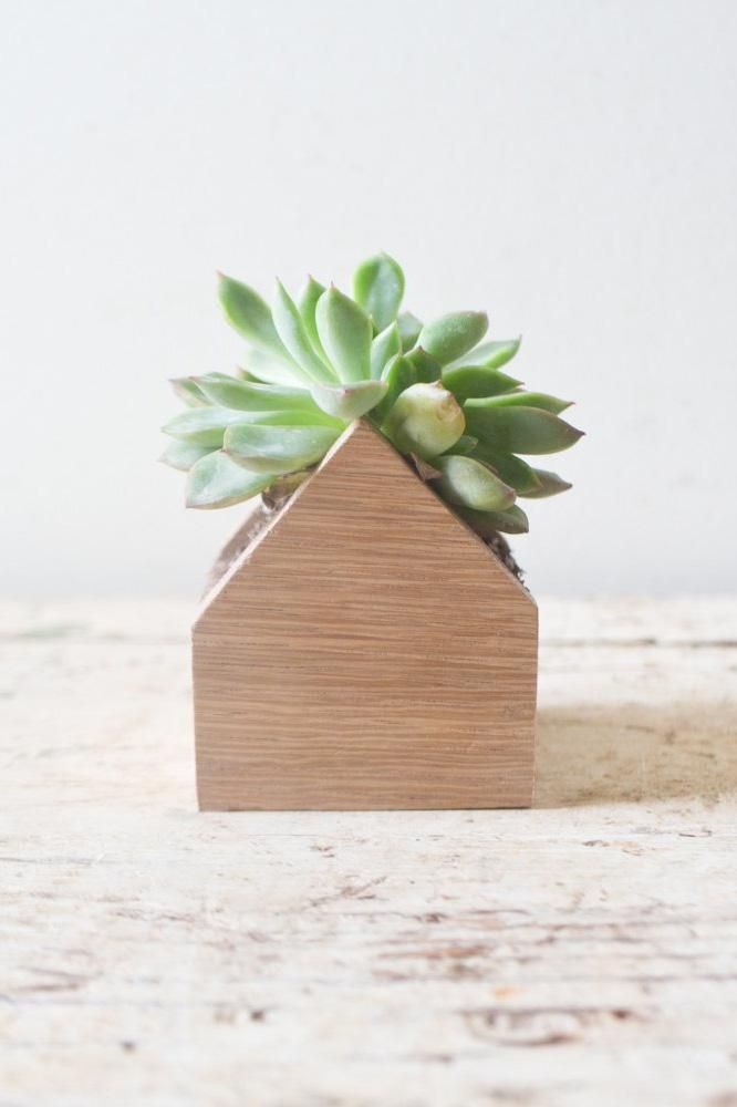 The perfect home for your greenery.