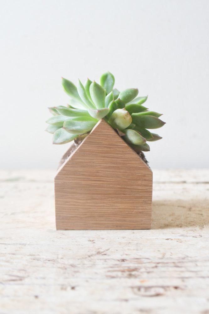 Small Planter Box Herb Succulents Air Plants Wooden Pot Container Oak Wood Planter Terrarium Paisagismo Jardim Jardim Ideias