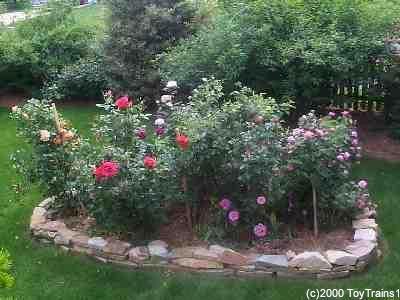 Side Yard Garden Rose Garden Landscape Memorial Garden Rose