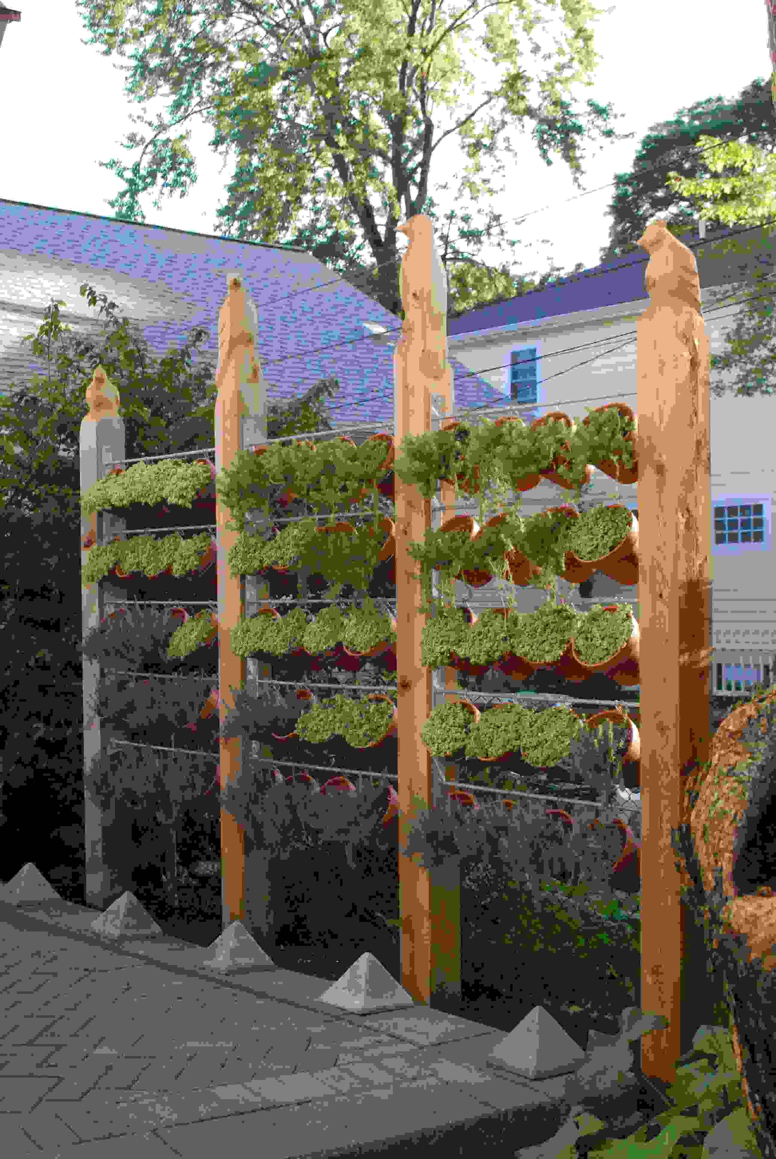 Clôture de jardin pas chère, originale et design | Fences, Green ...