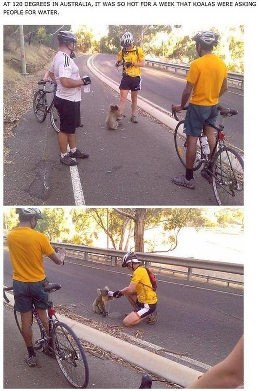15 Random Acts of Kindness to Restore Your Faith in Humanity
