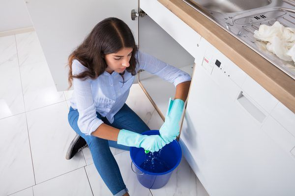 How to Get Rid of an Old, Musty Smell in Kitchen Cabinets ...