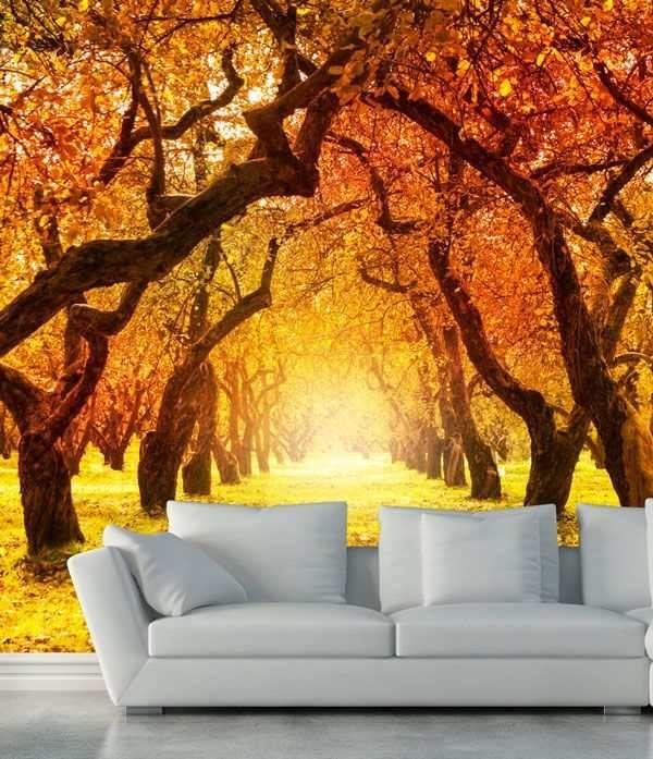 Murales De Paisajes Para Paredes Bosques Otoñales Autumn Trees Nature Art Prints Autumn Art