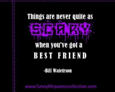 Funny Archives Funny Life Quotes Best Friend Quotes Image Quotes Funny Quotes About Life