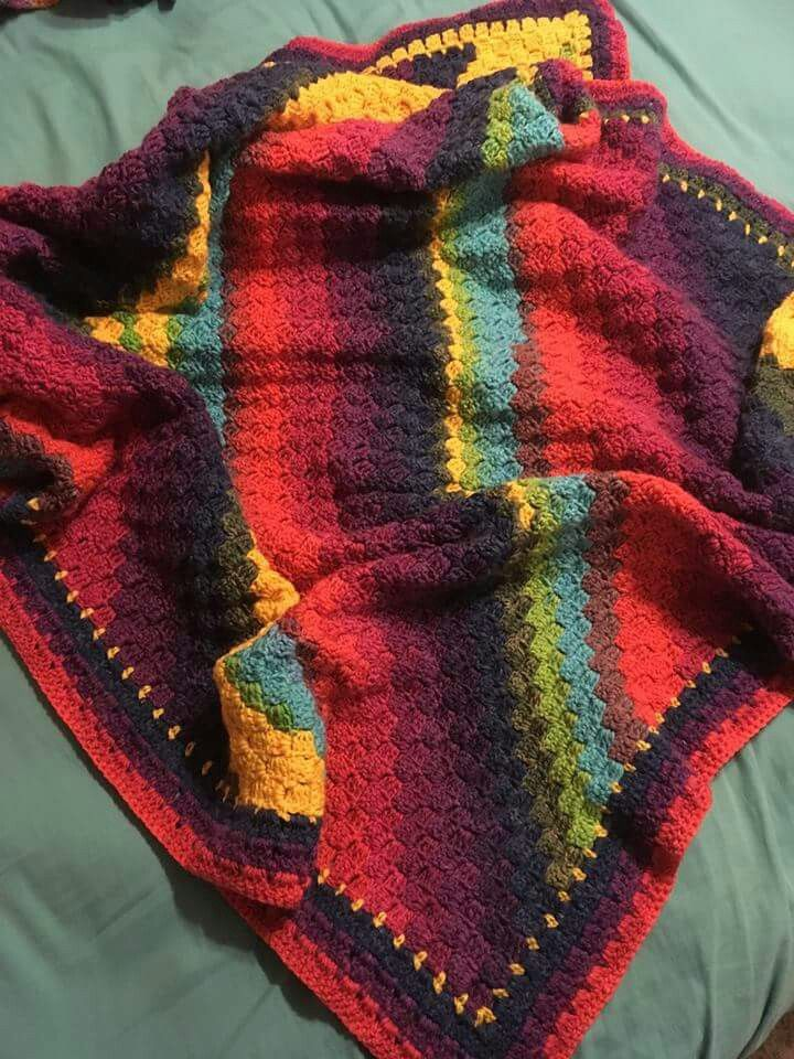 Made By Nicole Kay C2c Throw With Modern Granny Square Border Lion