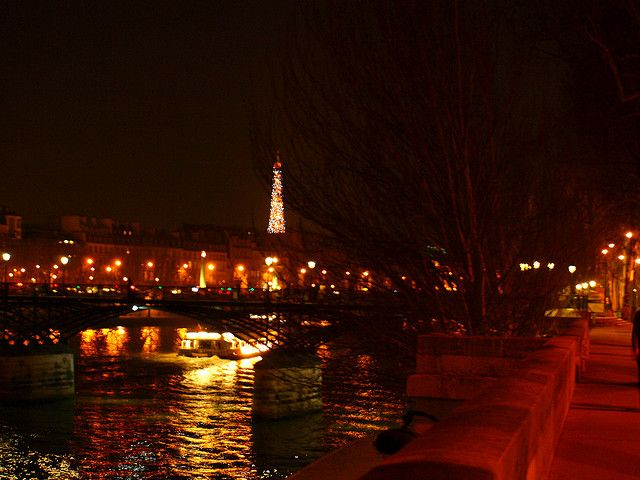 the city of lights-reminder of our dinner cruise on the Seine