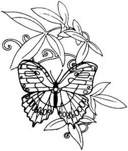 Line Drawings Of Flowers And Butterflies Bing Images Butterfly
