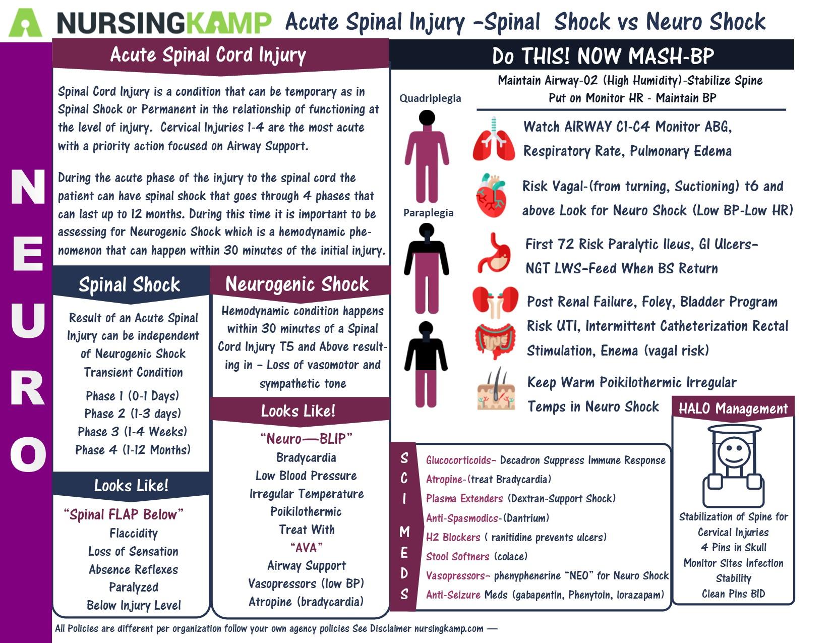 Pin On Neuro Medical Surgical Nursing School Brain Sheets Study Sheets