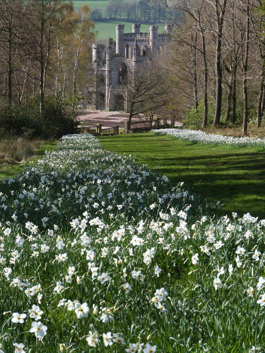 удобные плечи, весна в англии фото сволочной вас район