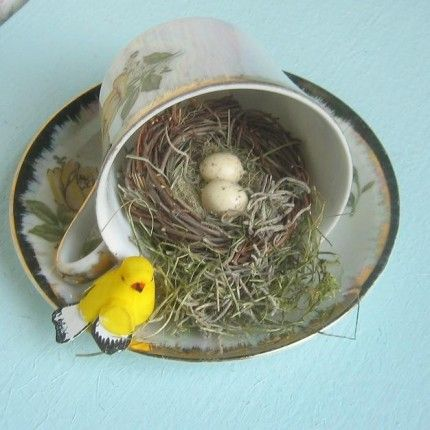 Teacup Bird's nest.  I made a flower arrangement in a teacup laying on it's side like this.