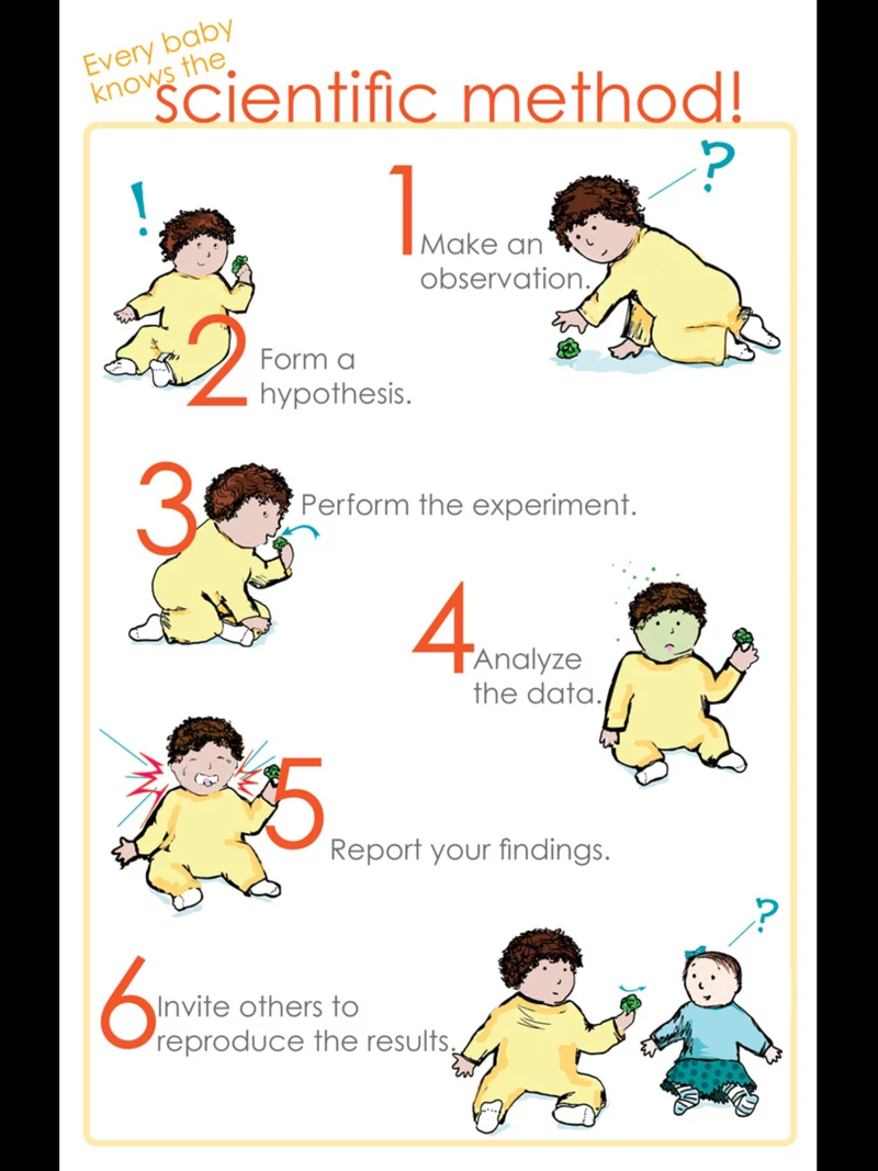 how are babies born