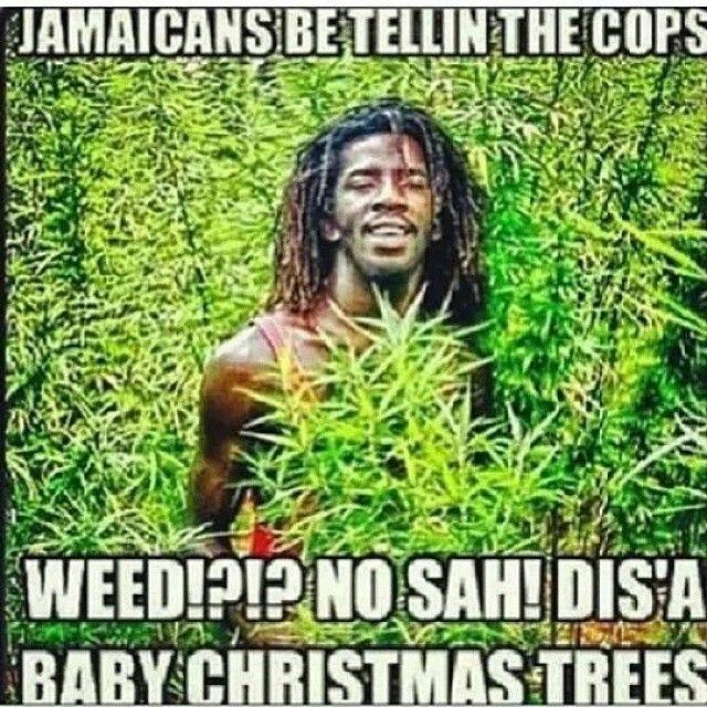Log In Tumblr Jamaican Quotes Jamaican Culture Make Me Laugh