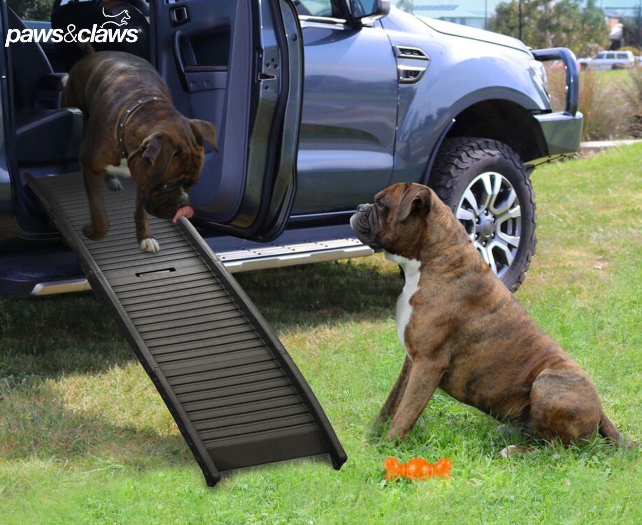 Paws Claws Folding Dog Car Ramp Luna Dog Ramp For Car Dog Car