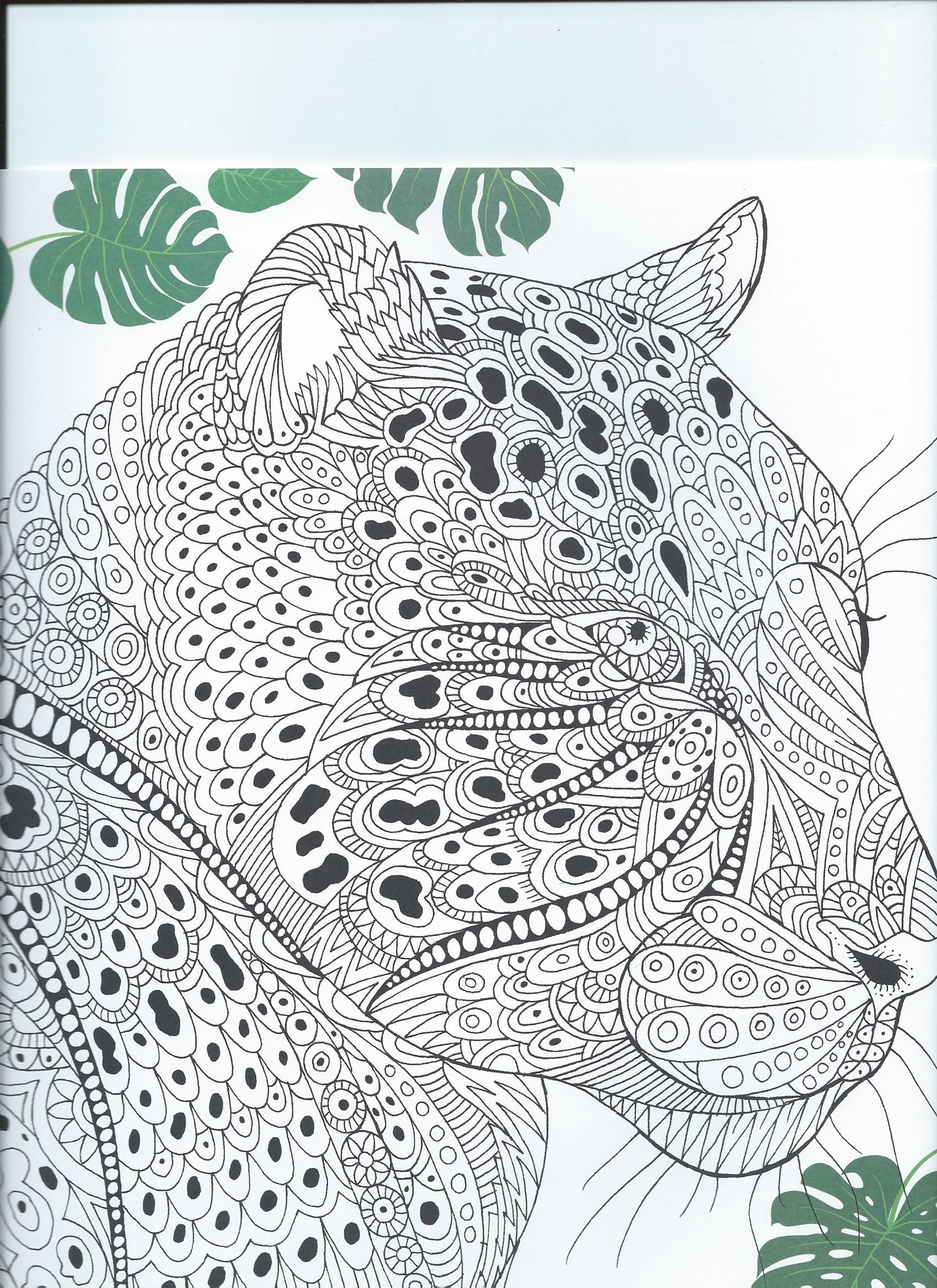 From The Coloring Book The Menagerie Animal Portraits To Color Animal Pictures To Color Dog Images Pet Portraits