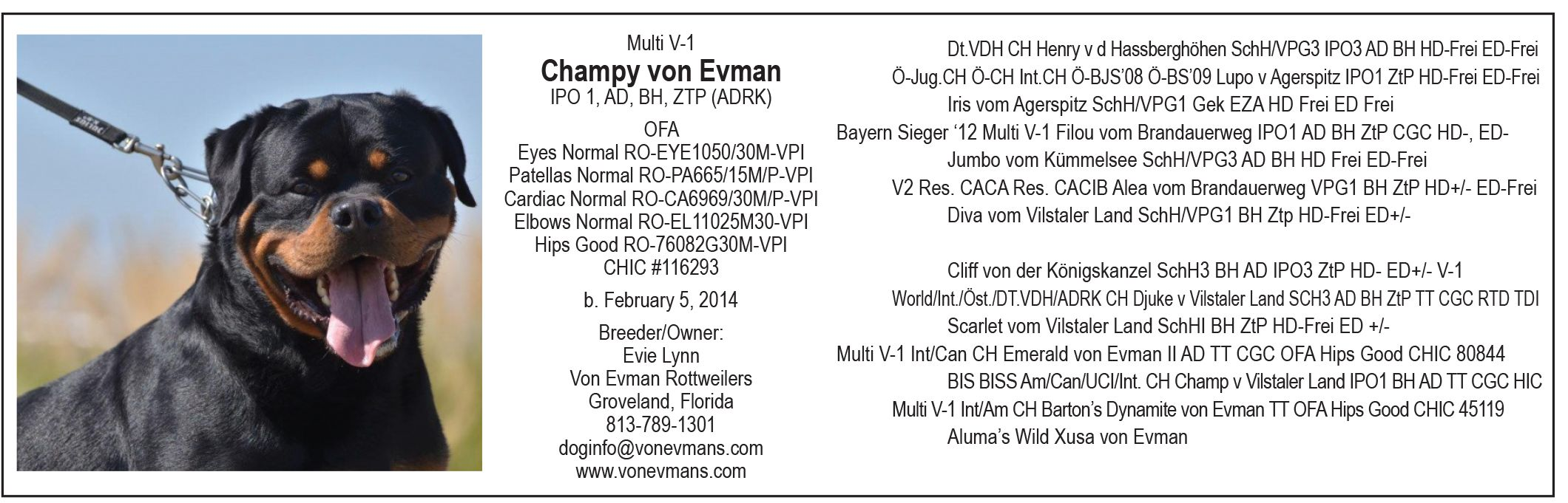Available At Stud Multi V1 Champy Von Evman Ipo 1 Ad Bh Ztp Adrk