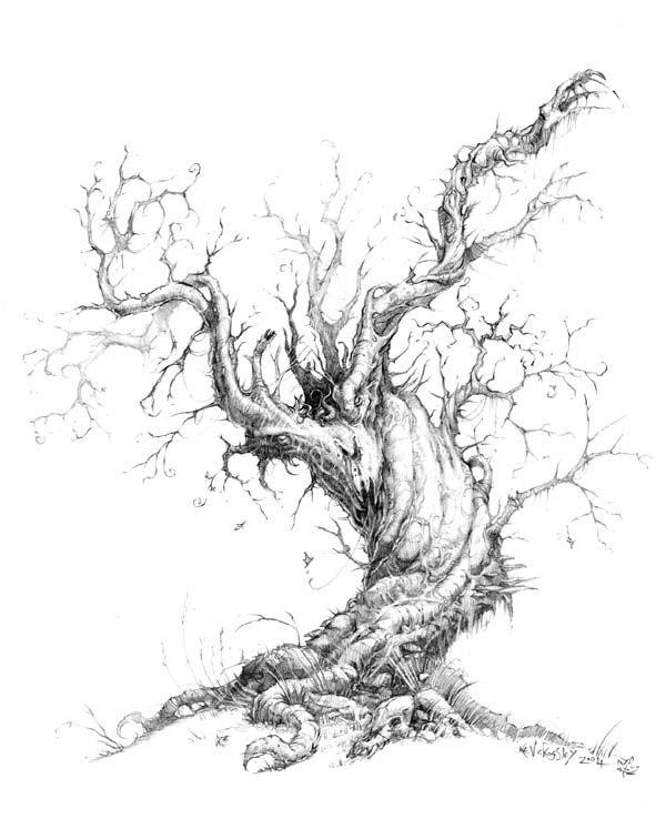 Old Tree Tree Drawing Landscape Drawings Tree Art