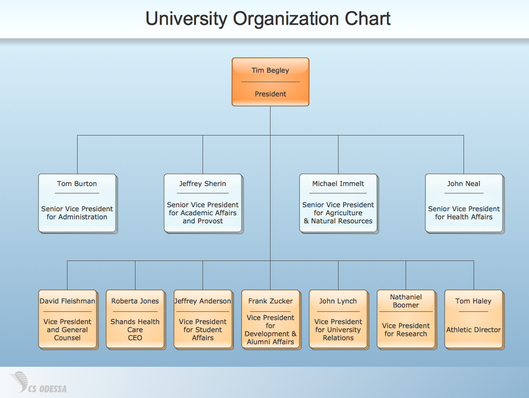 Sample  Matrix Organization Chart  It Organizational Structure