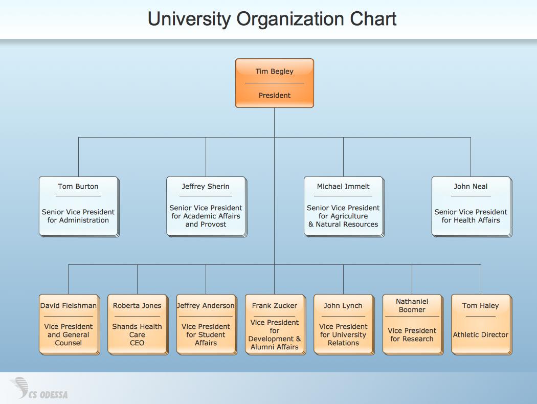 Organizational Structure. Org Chart University Organization Chart ...