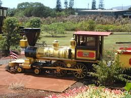 The Dole Plantation is a mad cool site to visit in Oahu for kids and adults.