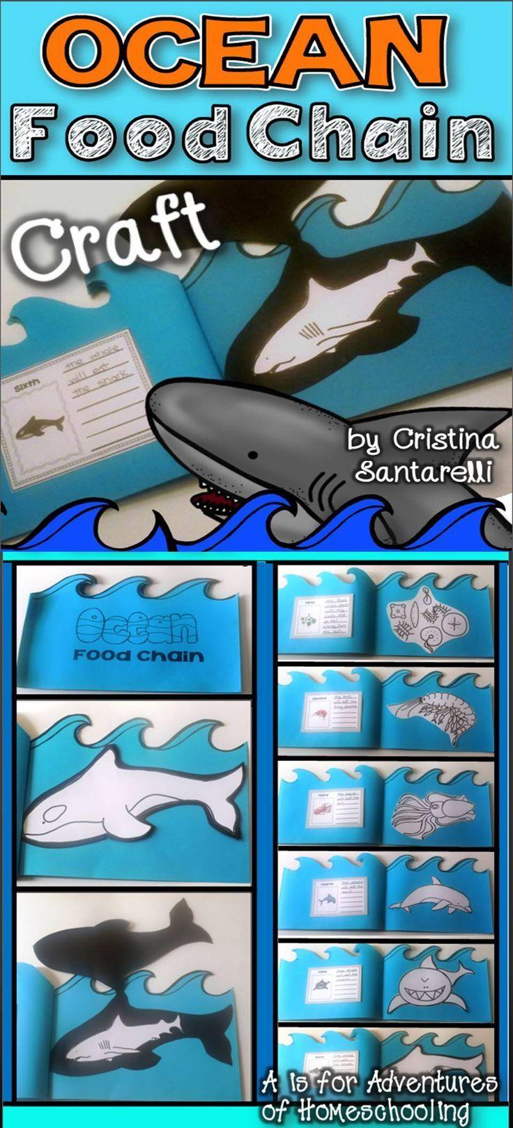 Ocean food chain Ocean food chain, Ocean food, Food
