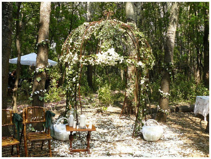 Forest arbor forest wedding hippie wedding lodge wedding