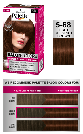 Palette Salon Colors 568 Light Chestnut Brown  Hair  Pinterest  Salons