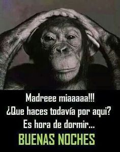 Pin By Lucero Gonzalez On Buenas Noches Spanish Humor Good Night Quotes Buena