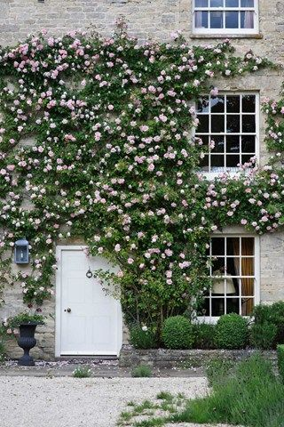 House & Garden's garden editor Claire Foster shares her advice for beautifying the exterior of your house with plants.
