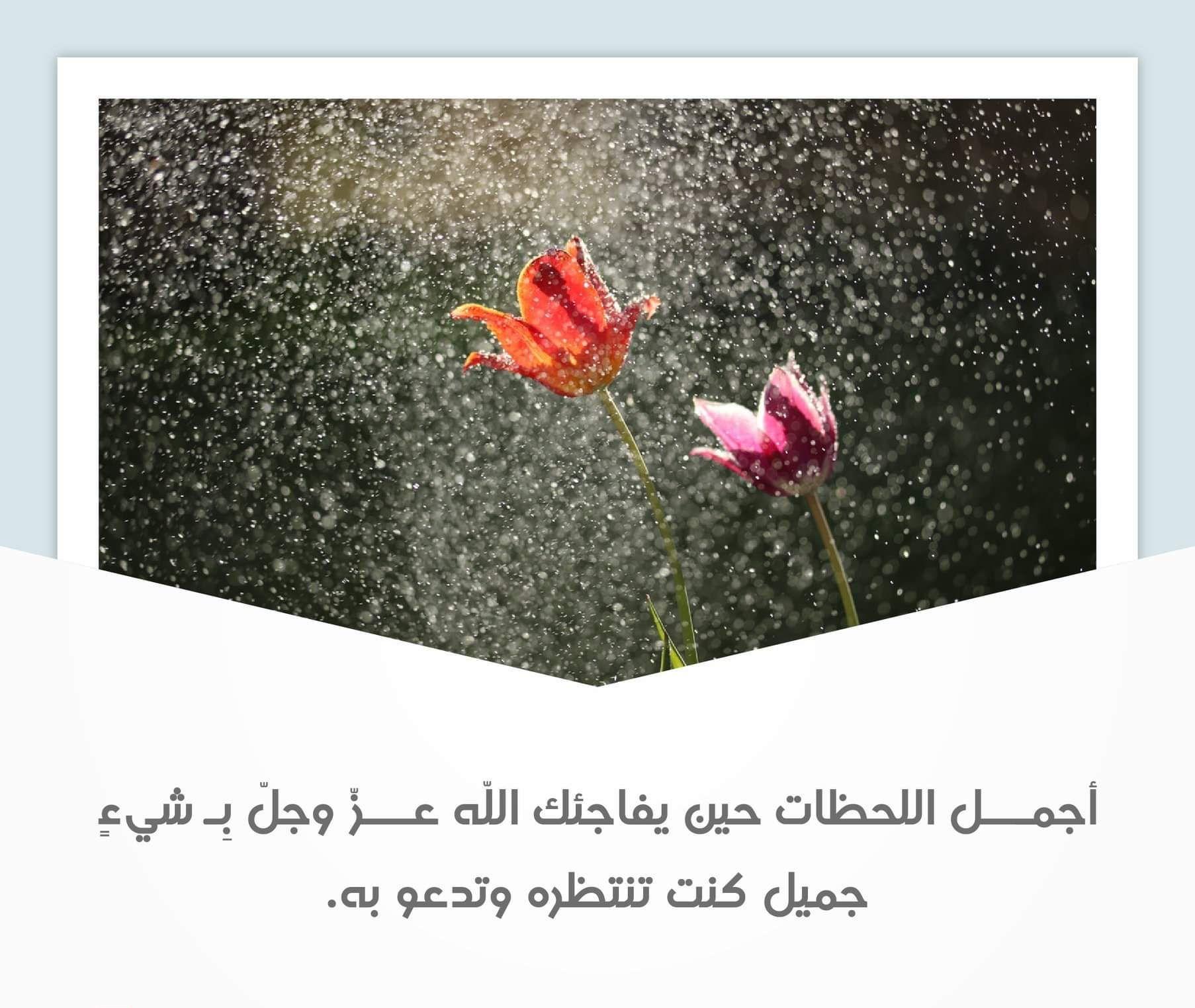 خواطر دينية قصيرة مزخرفة Words Quotes Cover Photo Quotes Study Motivation Inspiration