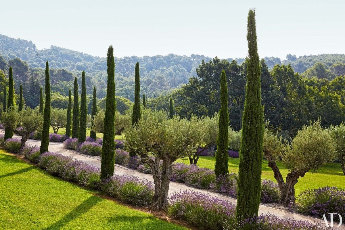 Photo of Frédéric Fekkai's Gorgeous Vacation Home in the South of France