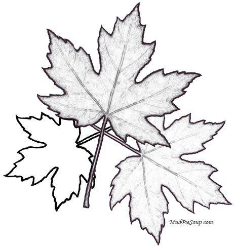 Autumn Leaf Coloring Page Sanat Ve Elisleri Boyama Sayfalari Ve